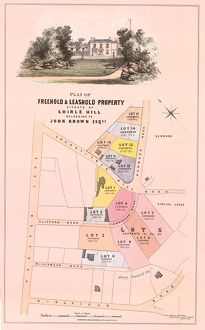 Plan of freehold and leasehold property situate at Shirle Hill, belonging to John Brown