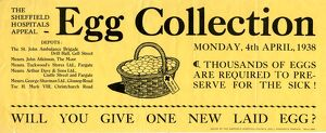 posters/sheffield hospitals appeal egg collection poster