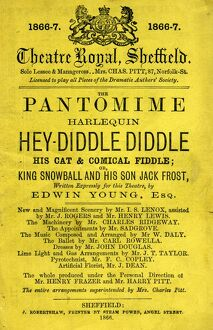 Sheffield Theatre Royal - the pantomime Harlequin Hey Diddle Diddle His Cat and Comical