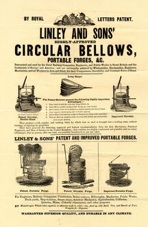 Thomas Linley and Sons, Bellows and Portable Forge Manufacturers, 1 Stanley Street